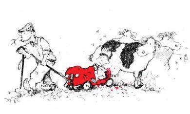 Boekje Een rode auto en meer verhalen van taalcursisten