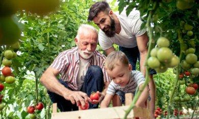 Nieuw feitenblad over doorbreken generatie-armoede