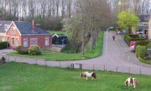 Drents dorp